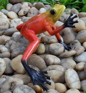 Tuinbeeld - bronzen beeld - Regenwoudkikker / rood - Bronzartes - 9 cm hoog